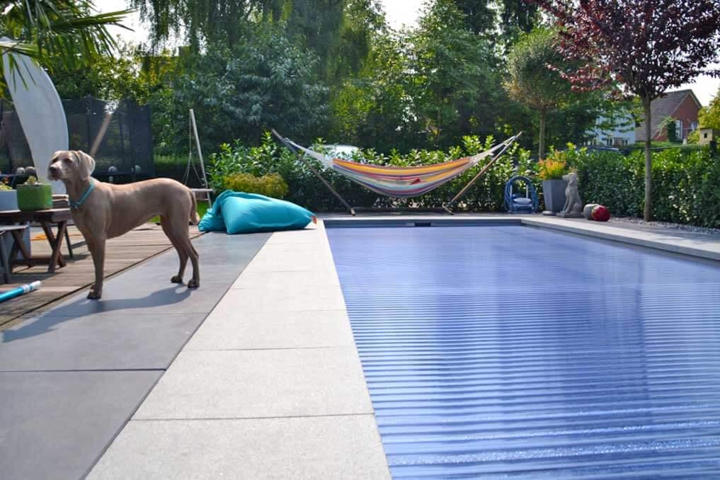 Hundehege Metelen Garten- und Landschaftsbau – Erfahrene Experten im Bereich Garten- und Landschaftsbau im Münsterland